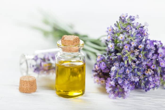переваги лавандової олії